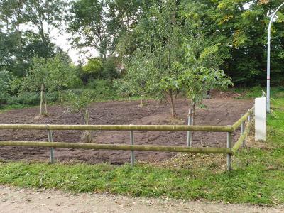 Foto zur Meldung: Wildwiesen in Neversdorf