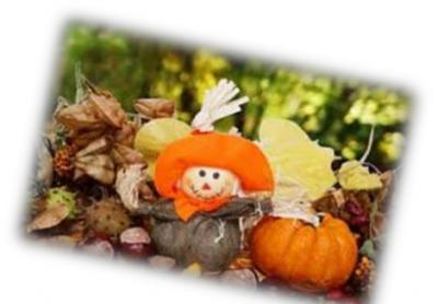 Ferienprogramm Herbstferien der OGTS