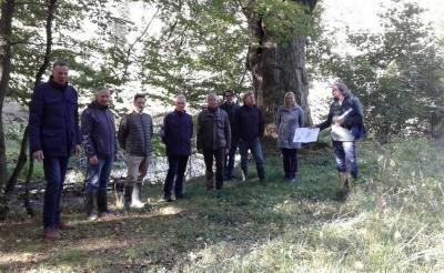 Foto zur Meldung: Pressemitteilung: Gemeinsame Renaturierungsmaßnahme der Gemeinde Willingshausen und den  Waldinteressenten Wasenberg geplant