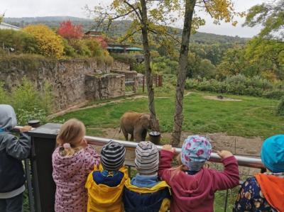 Foto zur Meldung: Kita Storchennest besucht den Opel-Zoo