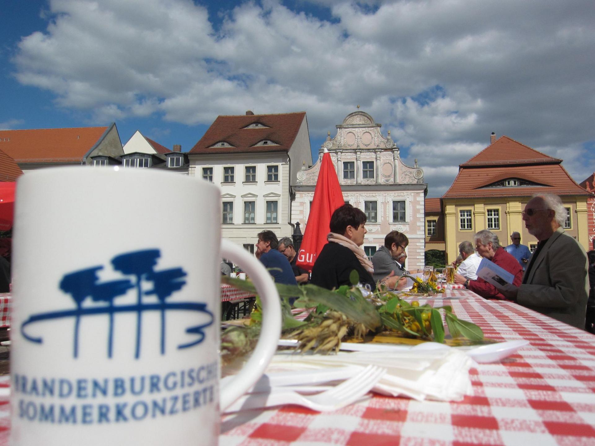 Brandenburgisches Sommerkonzert 2015 (5)