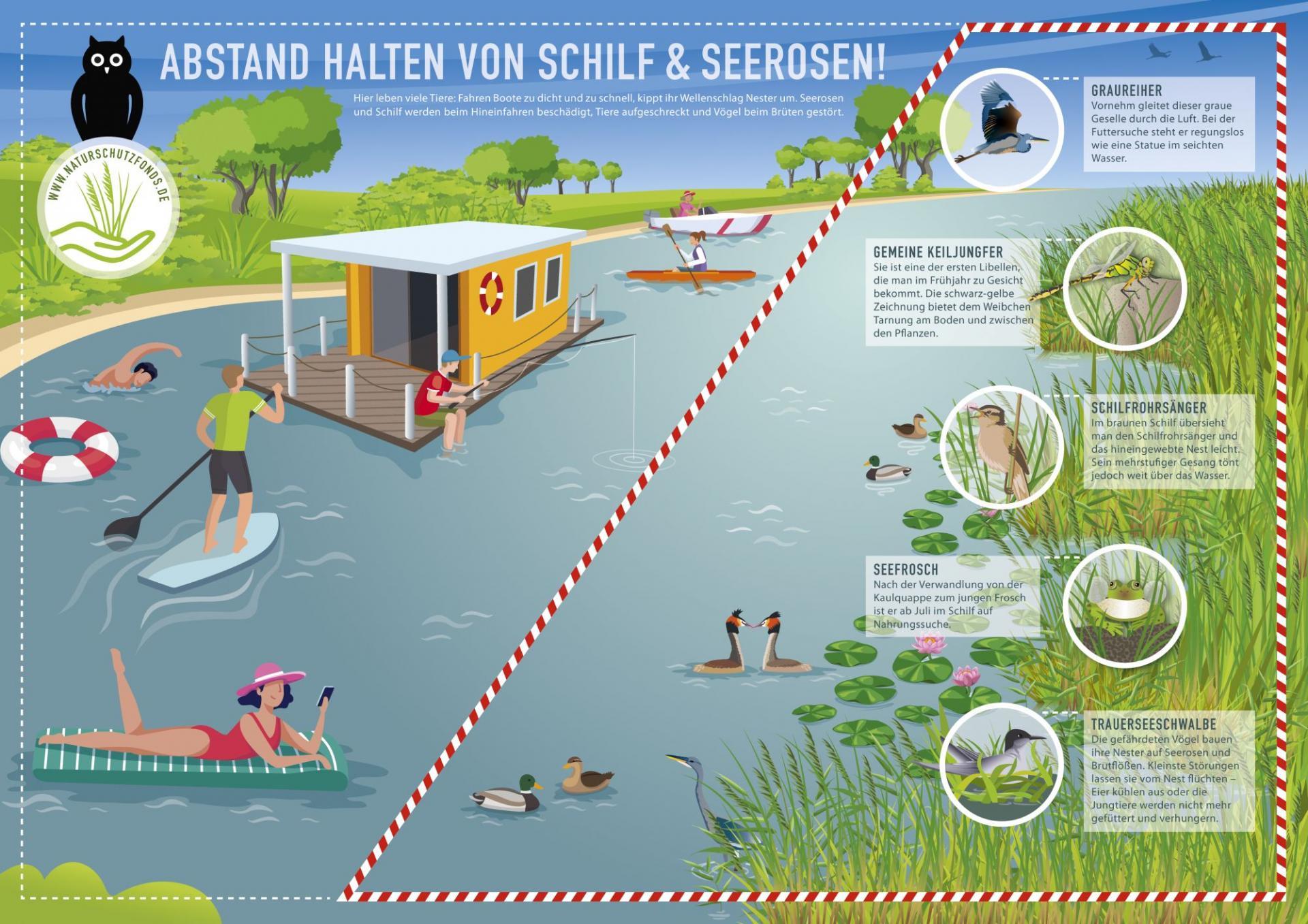 Infografik_Wassertourismus_Druckdatei