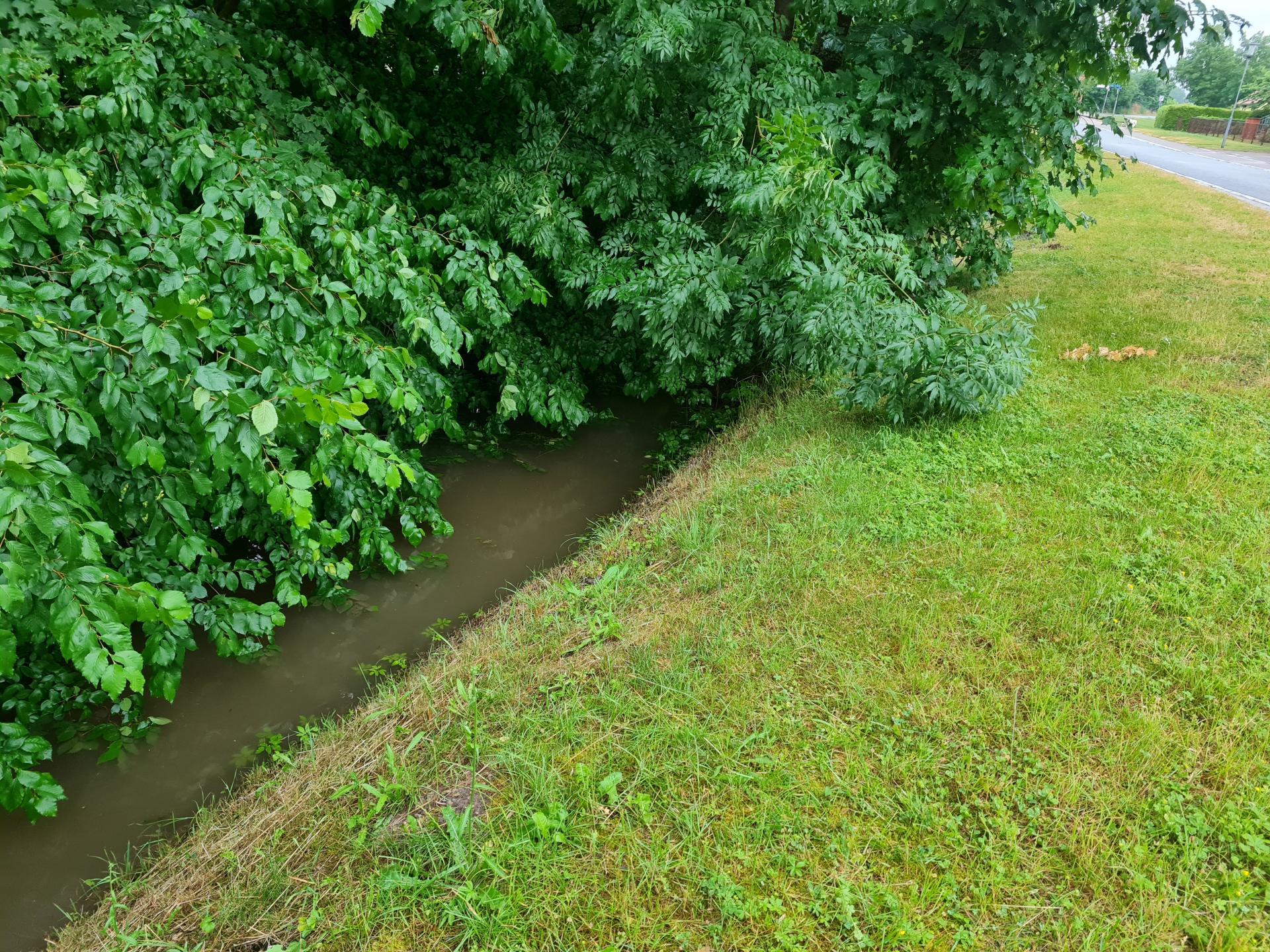 Der sonst so bescheidene Seegraben erreichte einen historischen Wasserstand.