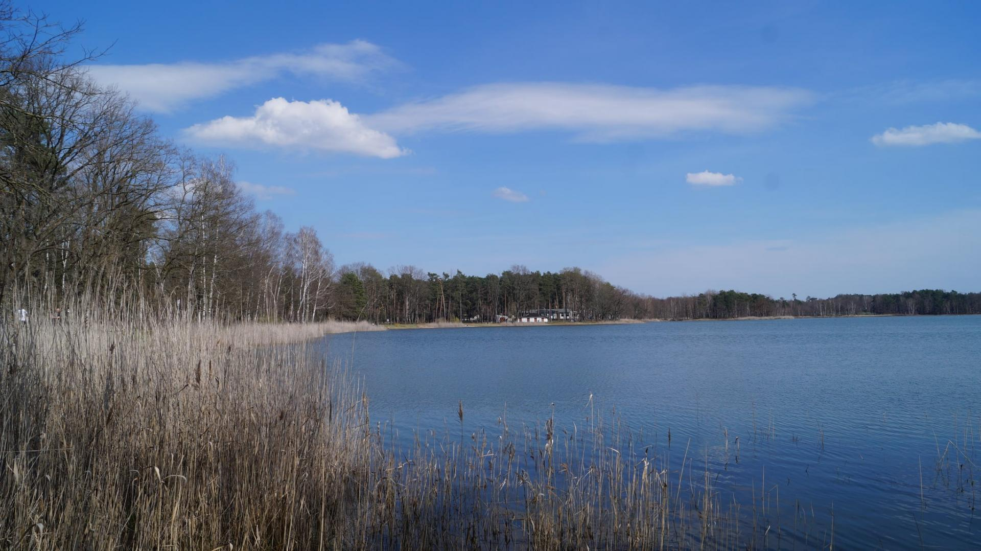 Körbaer Teich im April 2021