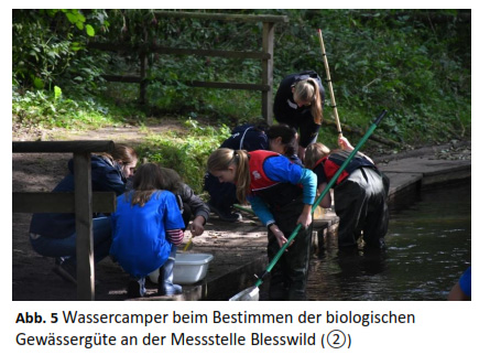 Biologische Untersuchung an Mess-Stelle 2 (Blesswildgehege)