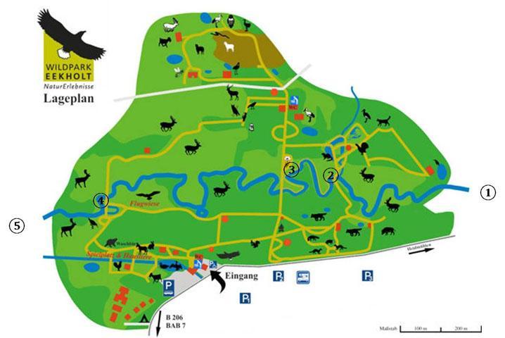 Lageplan des Wildparks mit den eingezeichneten Messstellen
