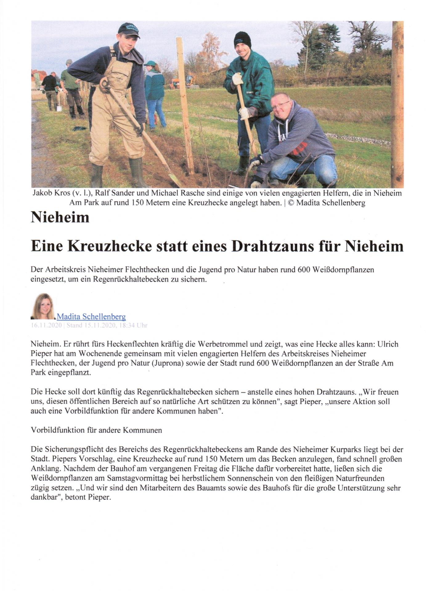 Kreuzhecke 2