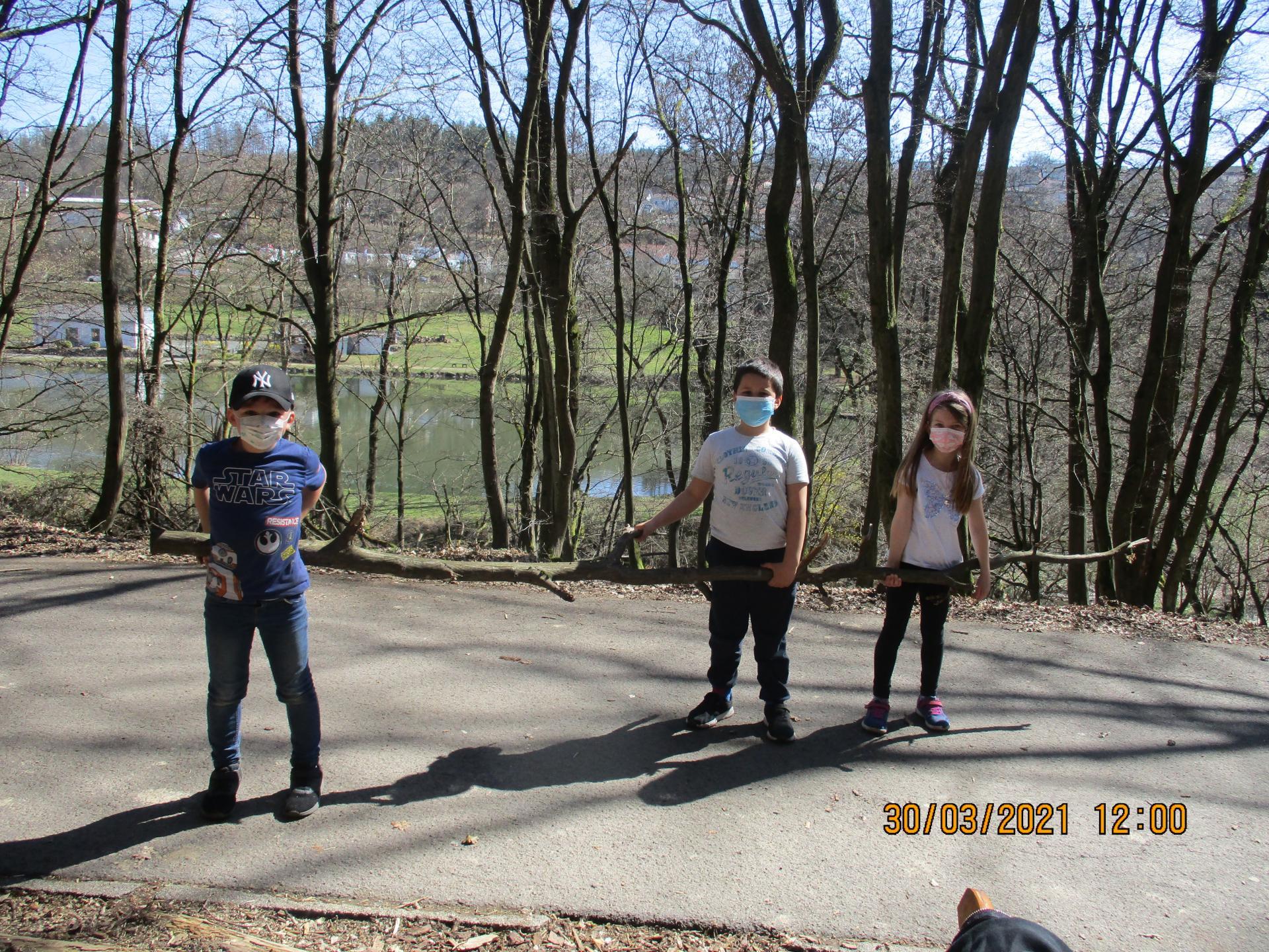 Teamarbeit im Wald