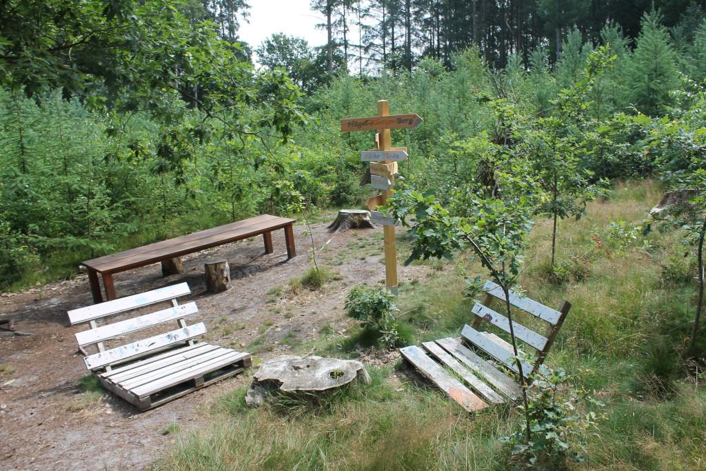 Waldkindergarten Zwergnasen