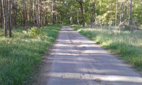 Straße nach Michaelisbruch