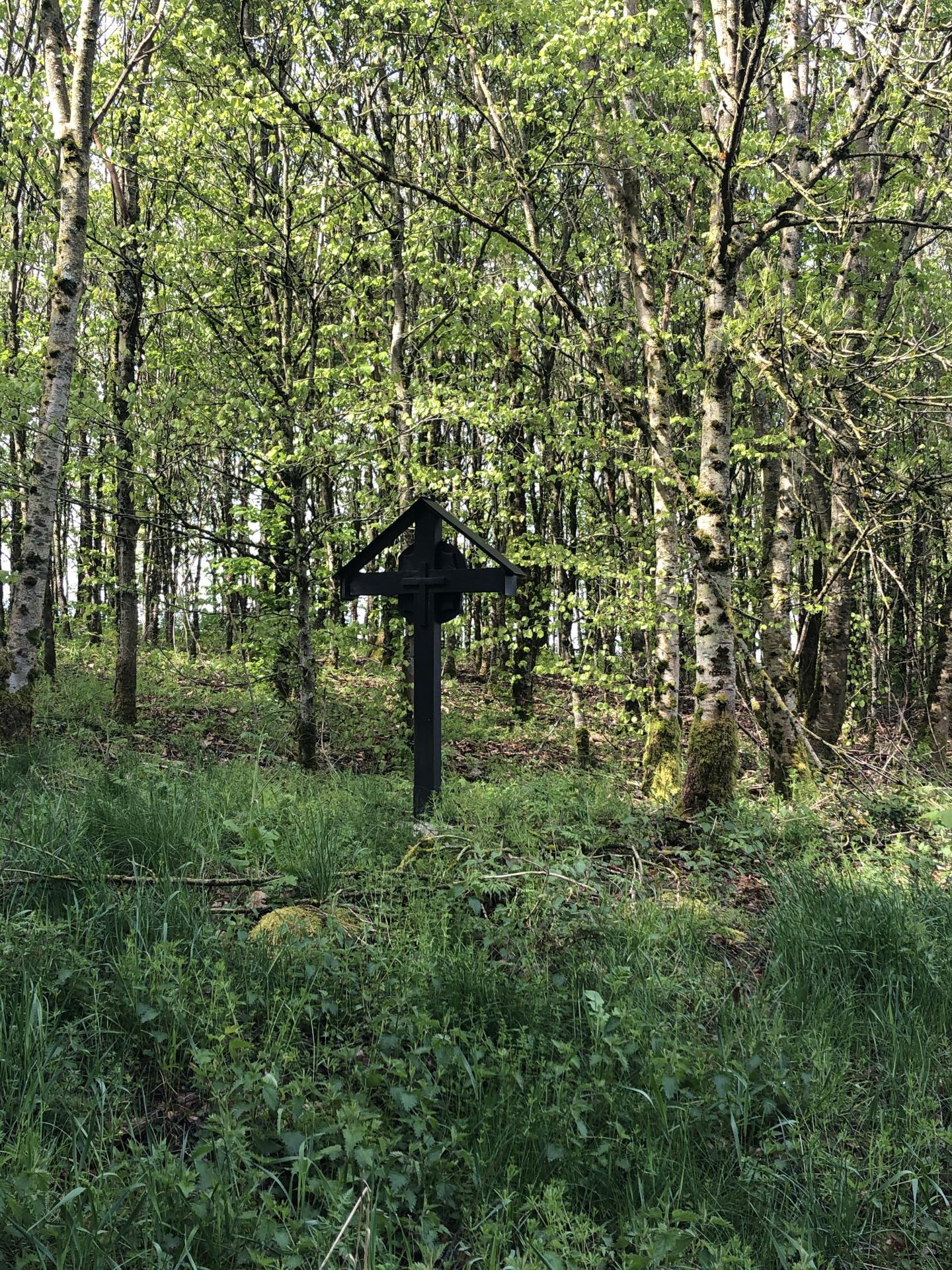 Wanderweg K181 1