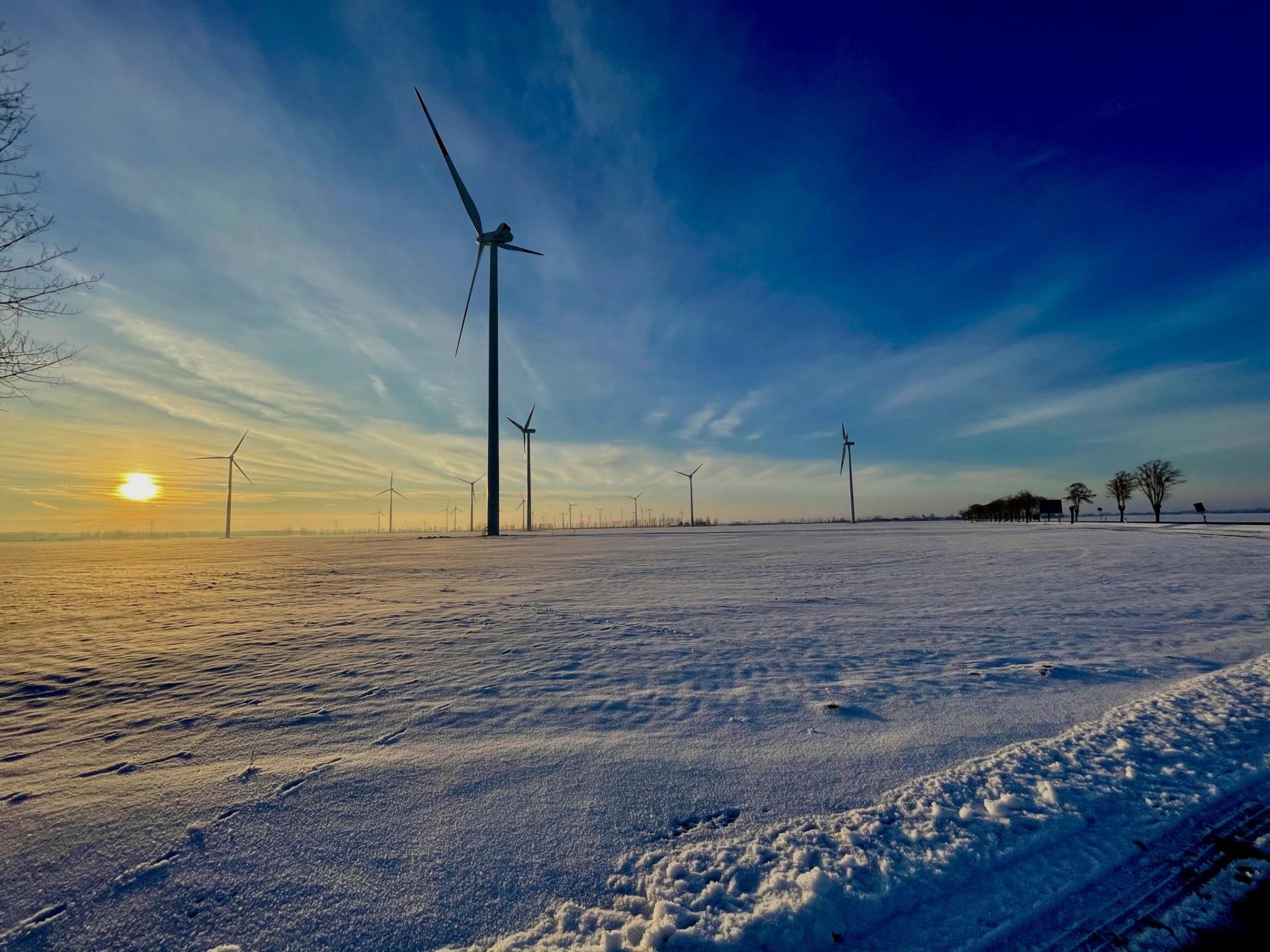 Windräder bei Schnellin (Foto A. Montenbruck)