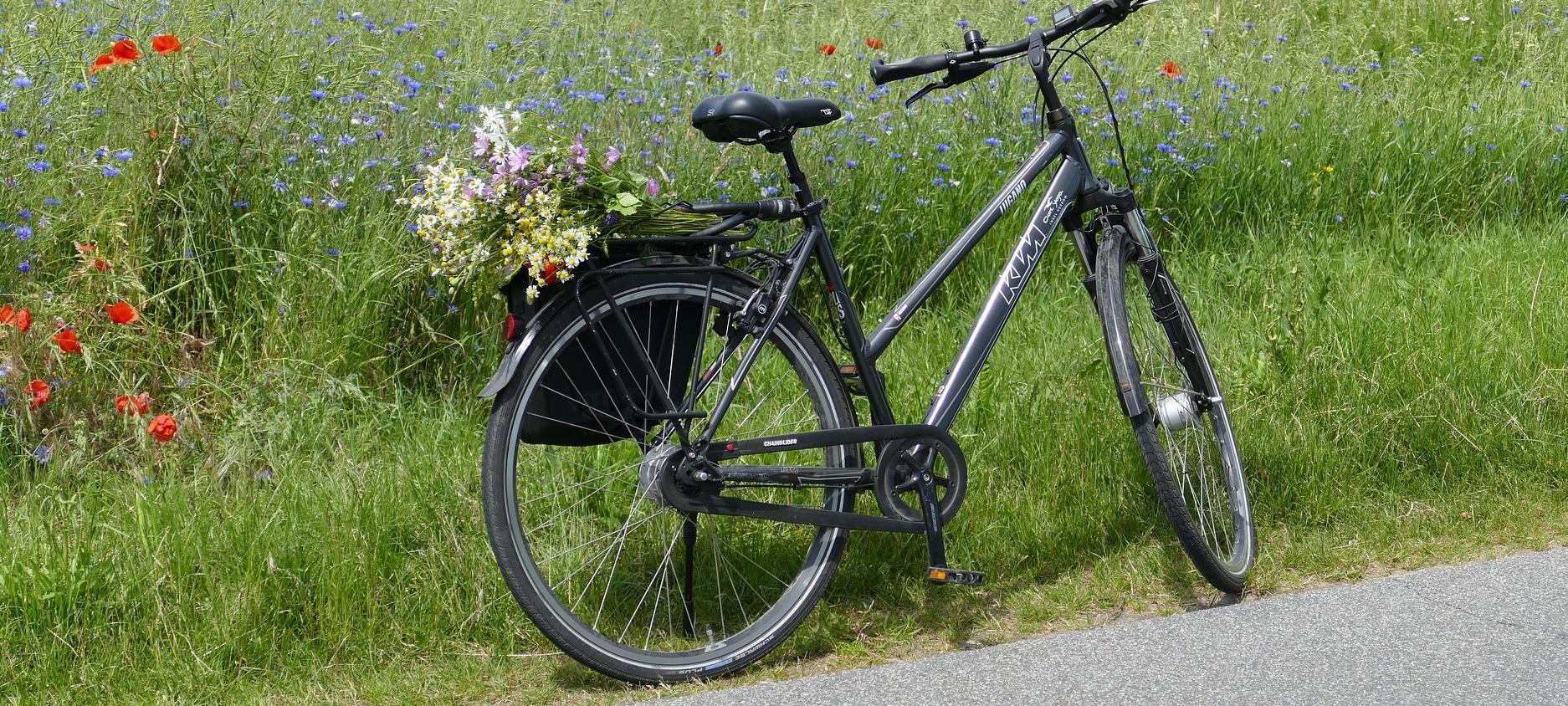 fahrrad fahren_HEADER NEU