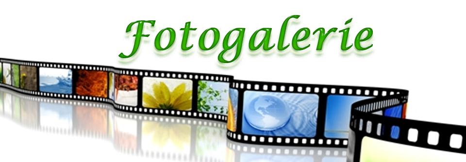 Fotogallerie