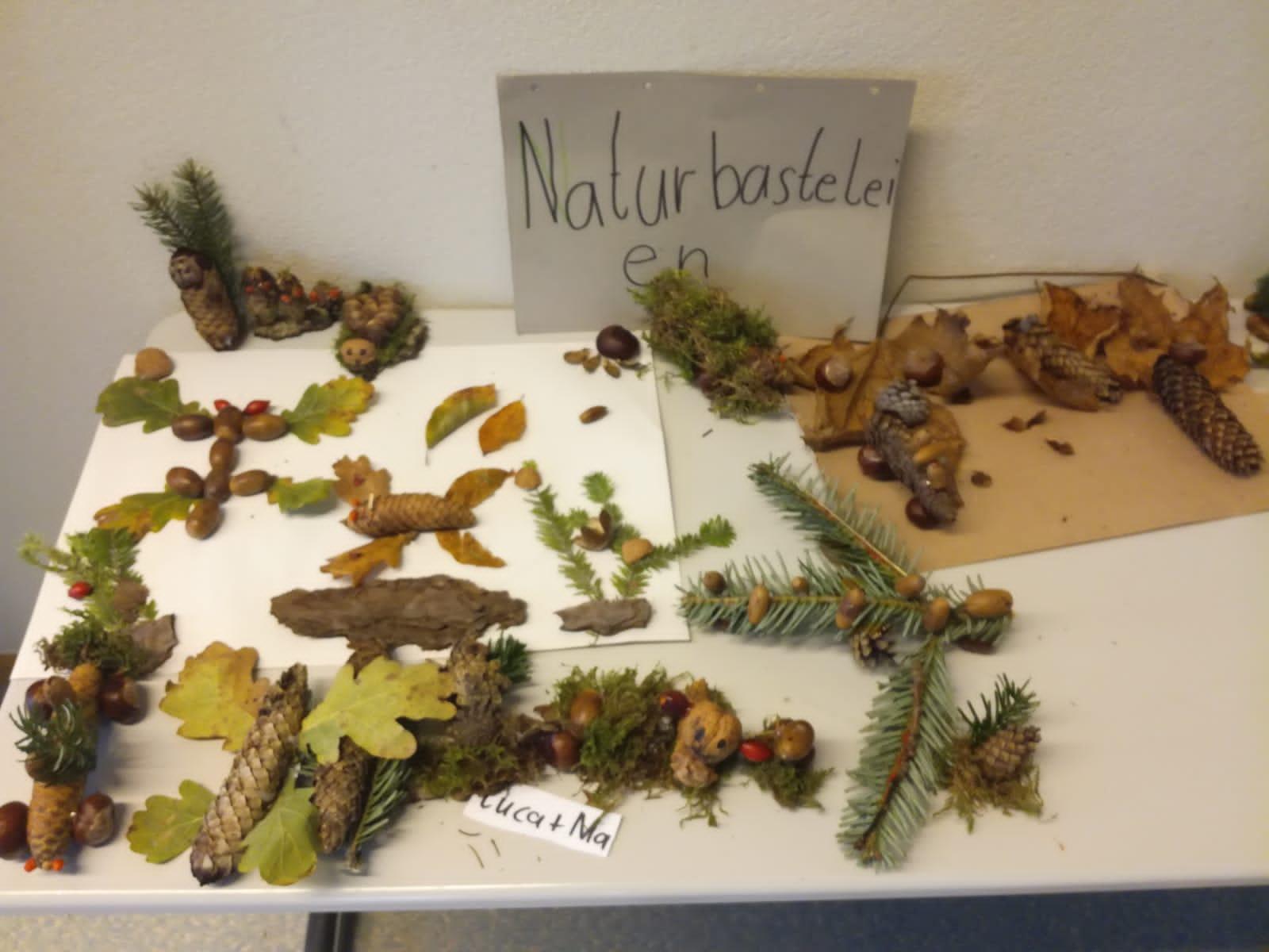Naturmaterialien_4. Klasse