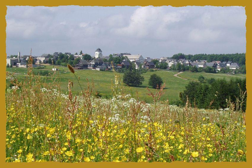 Staatlich anerkannter Erholungsort Neustadt a. Rstg. - der Rennsteig verläuft mitten durch den Ort