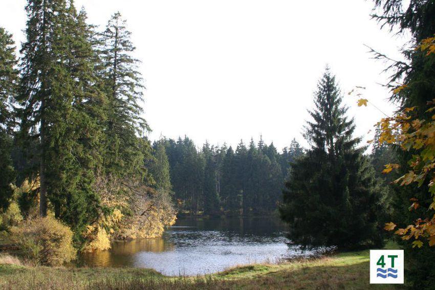 Ochsenbacher Teich - einer der Teiche zur 4 - Teiche - Wanderung