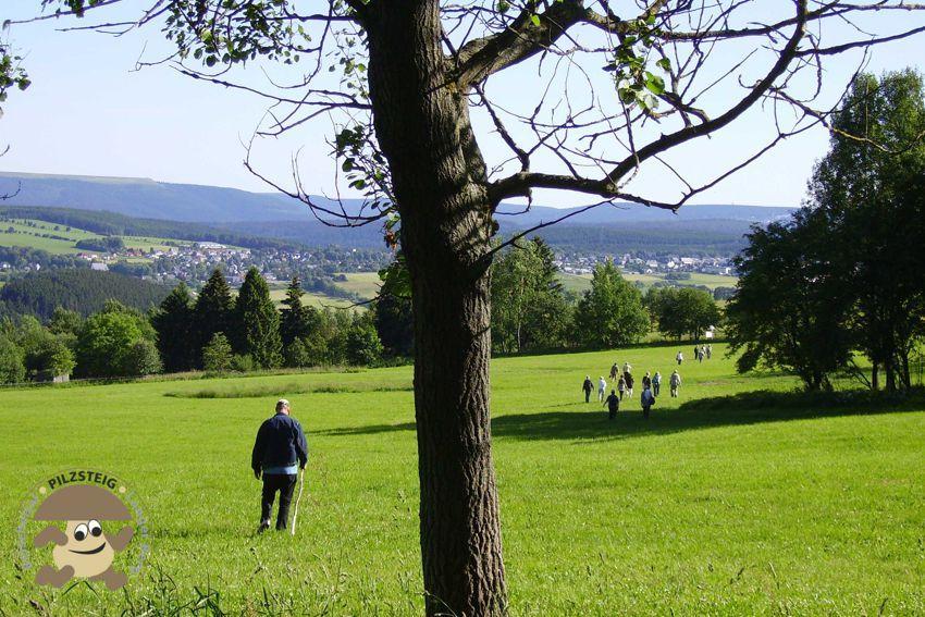 Pilzsteig von Gehren zum Rennsteig nach Neustadt a. Rstg. über den Langen Berg