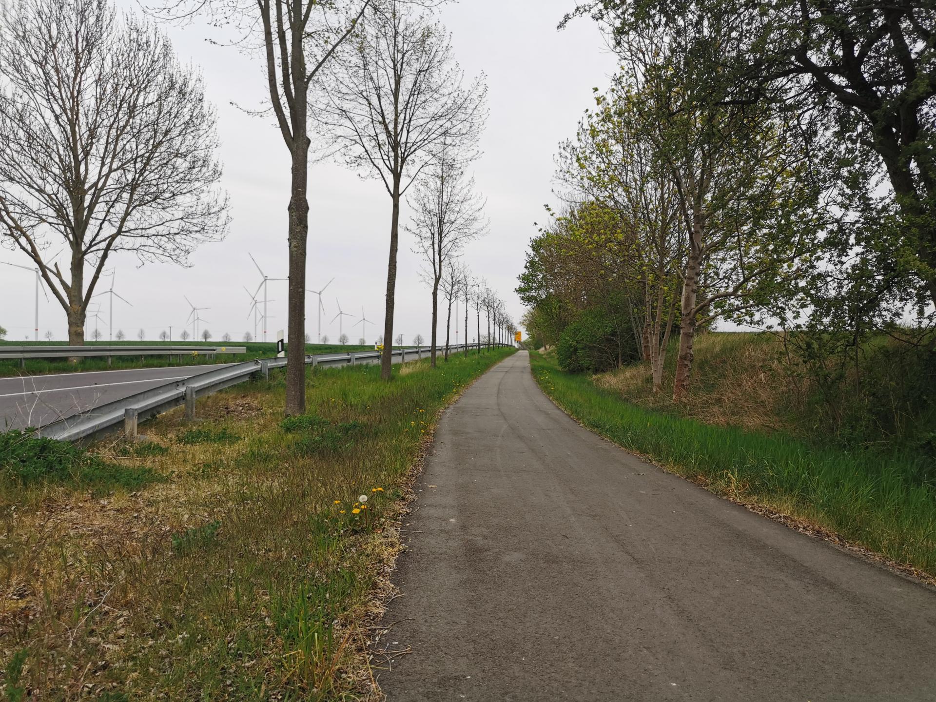 Oder_Neißer_Radweg