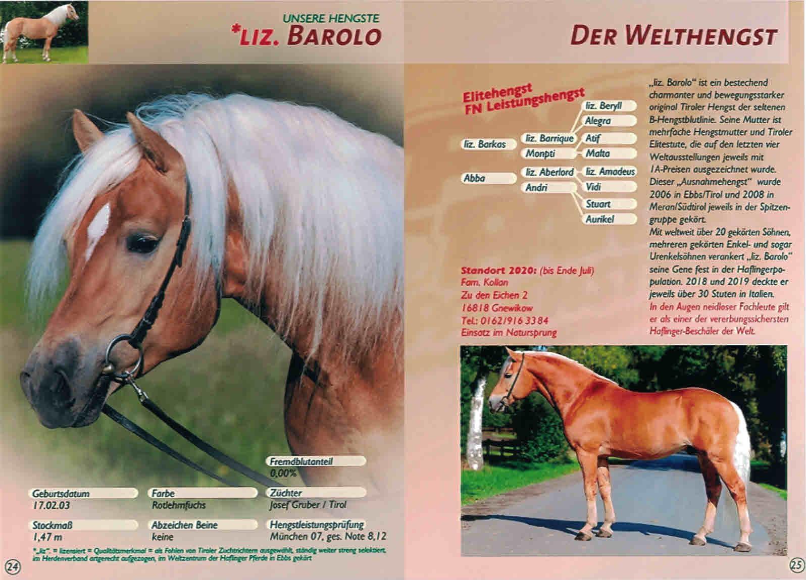 Welthengst Liz. Barolo