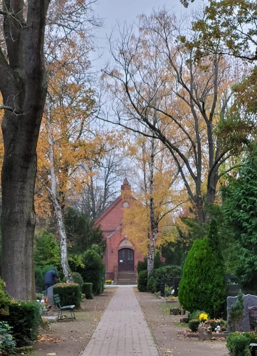 Neustädter Friedhof, Magdeburg