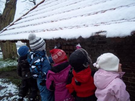Winter Eiszapfen