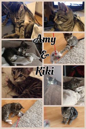 Amy und Kiki
