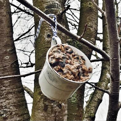 Vogelfutter in Tassen