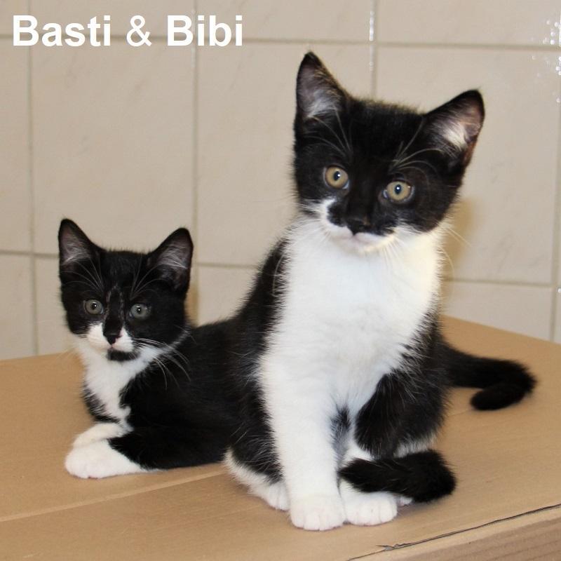 Basti & Bibi