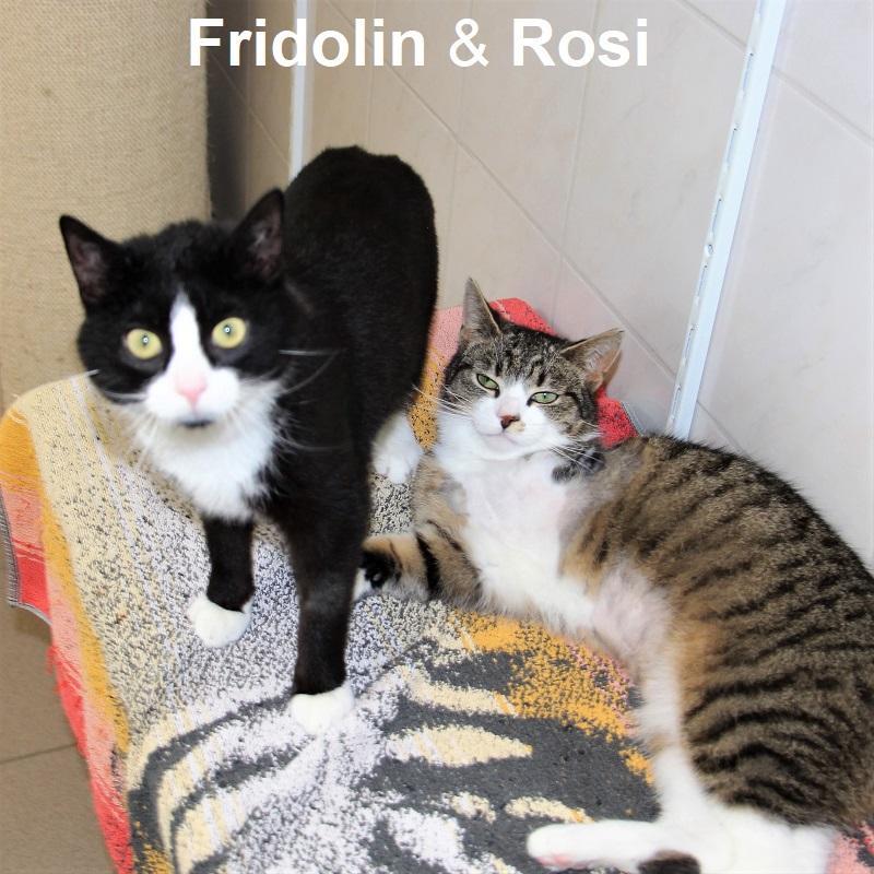 Fridolin & Rosi