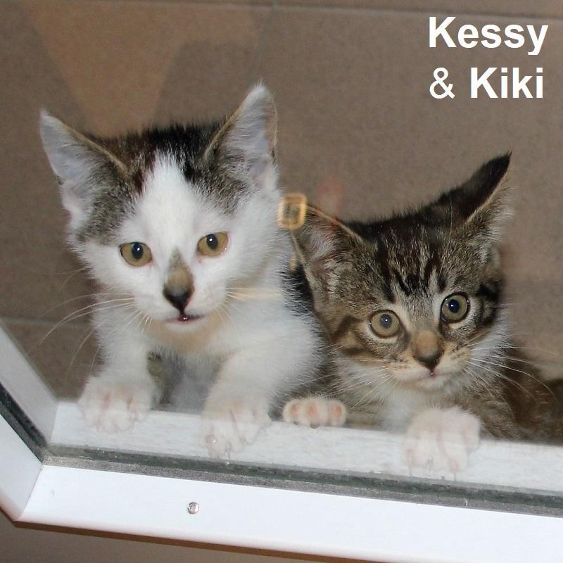 Kessy & Kiki