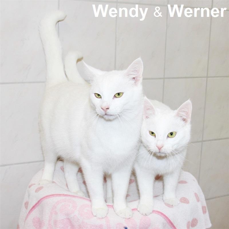 Wendy & Werner