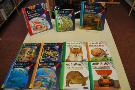 Taschenlampenbücher