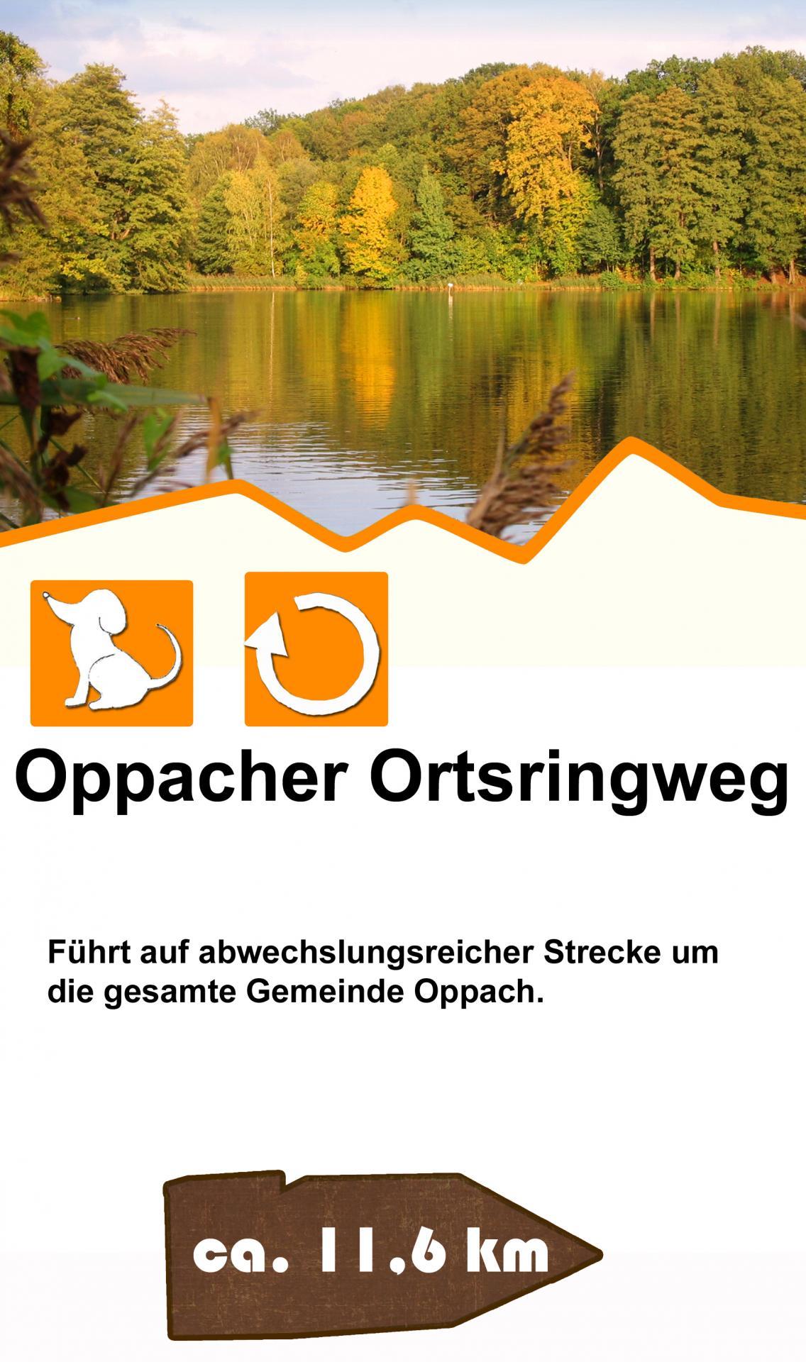 Oppacher Ortsringweg
