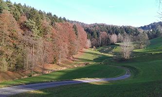 Niedermayerweg