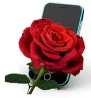 Blumen-Telefon Diana Möller