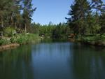 Blick über den Biehainer See