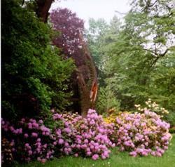 Rothenburger Park