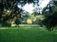 Park Rothenburg Sommer