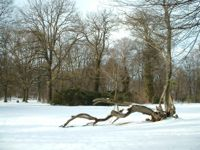 Park Rothenburg Winter