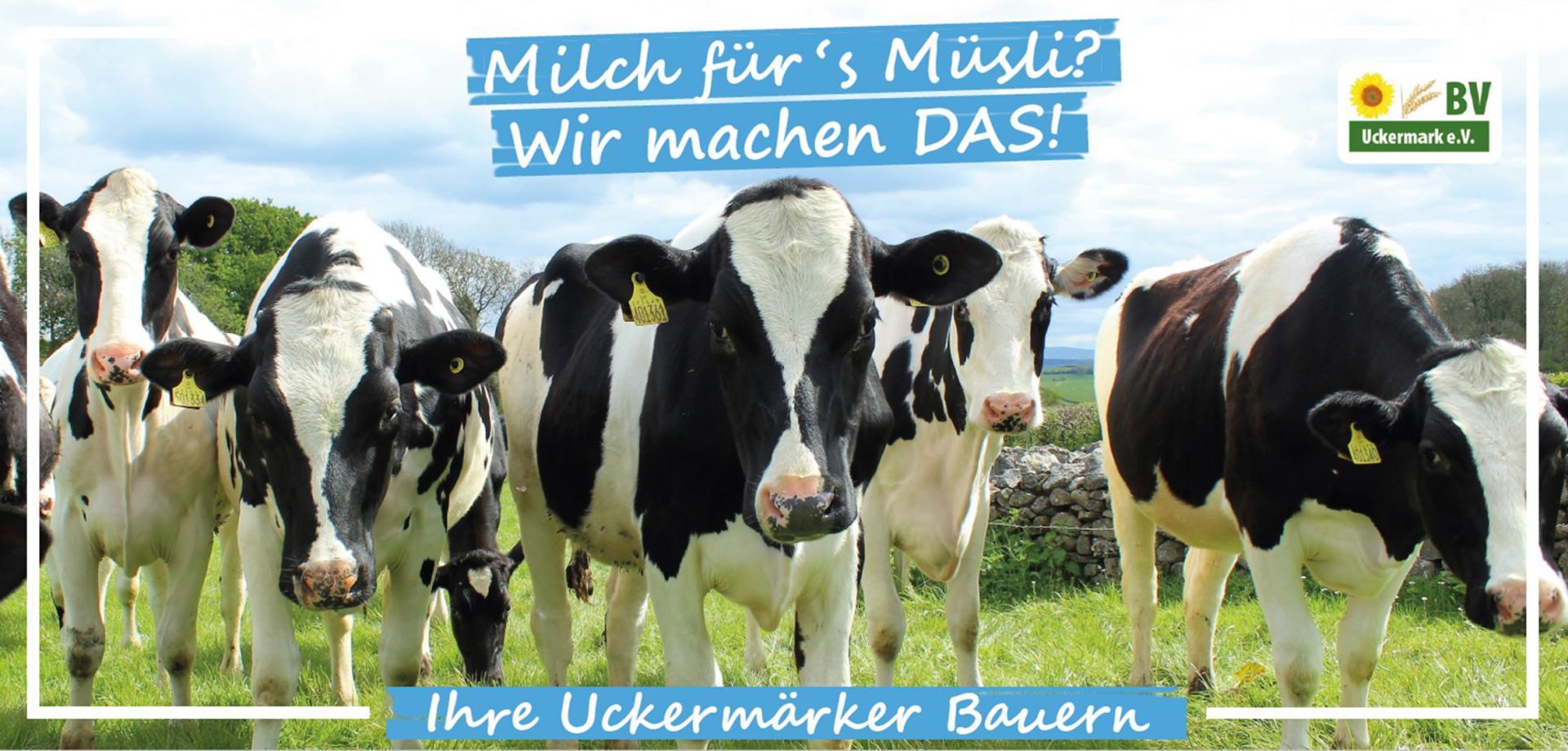 Milch fürs Müsli
