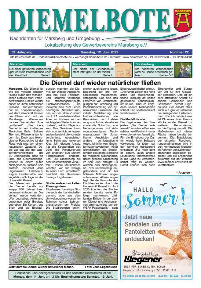 Diemelbote_cover_22_21