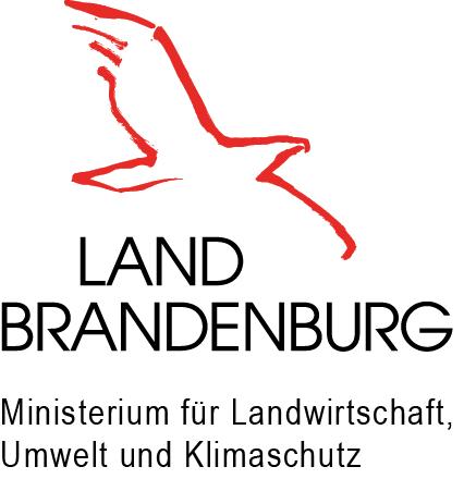 MLUK-Logo