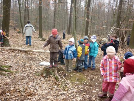Unsere Großen gehen regelmäßig in den Wald