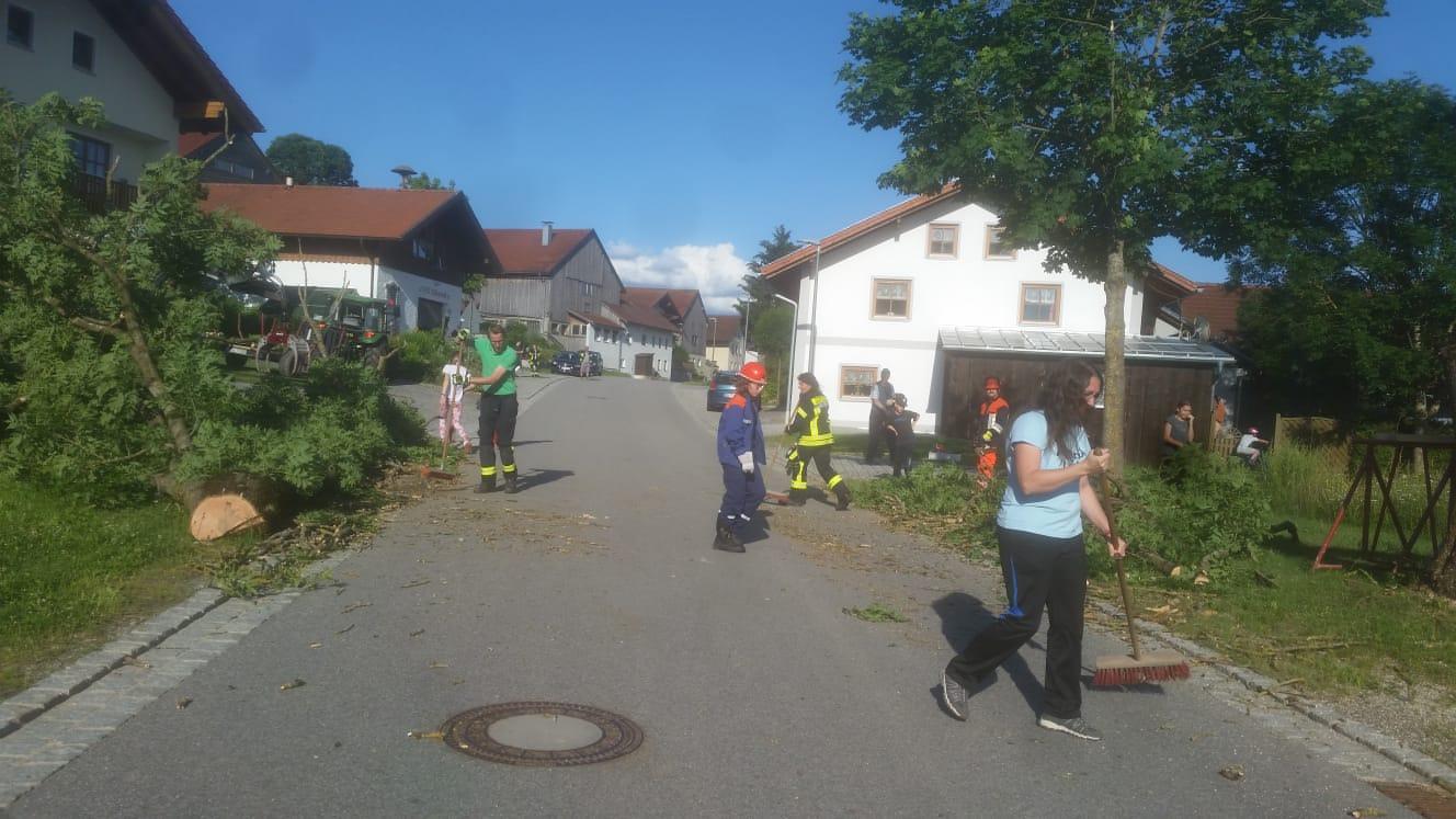 Baum-Fällung/Straßensperre Mitterbichl 3