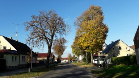 Bahro Dorfstraße Foto: Besucherinformation Neuzelle