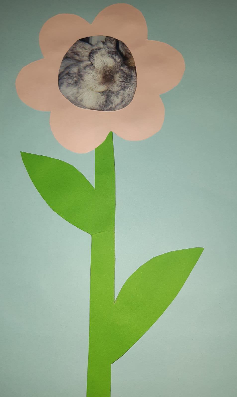 Blume mit Bild