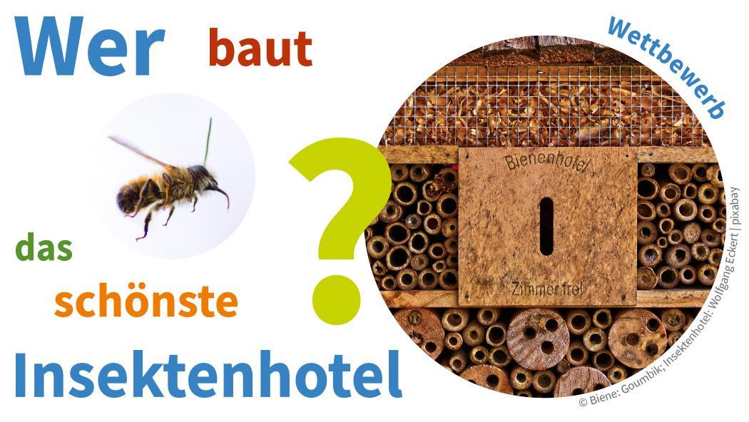 Wettbewerb-Insektenhotel