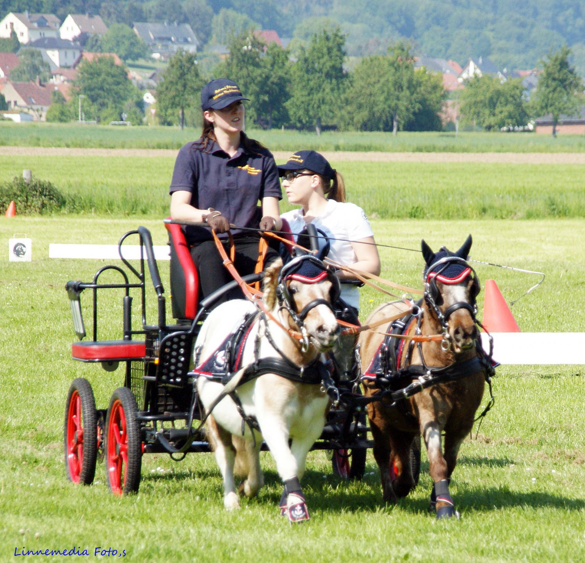 Reit- und Fahrverein Wöhrener Pferdefreunde e.V.