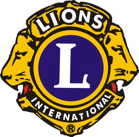 Lions-Logo.jpg